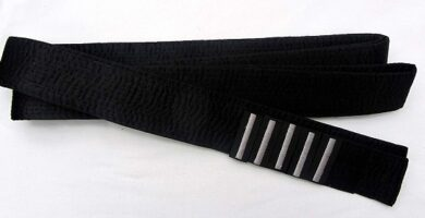 Cinturon negro aikido quinto dan