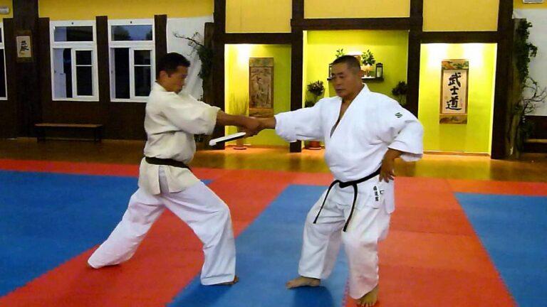 Nariyama Aikido Tomiki