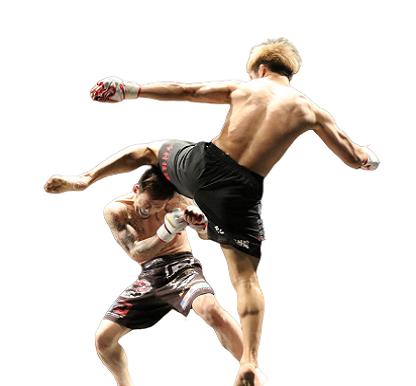 Artes-Marciales-Mixtas-MMA